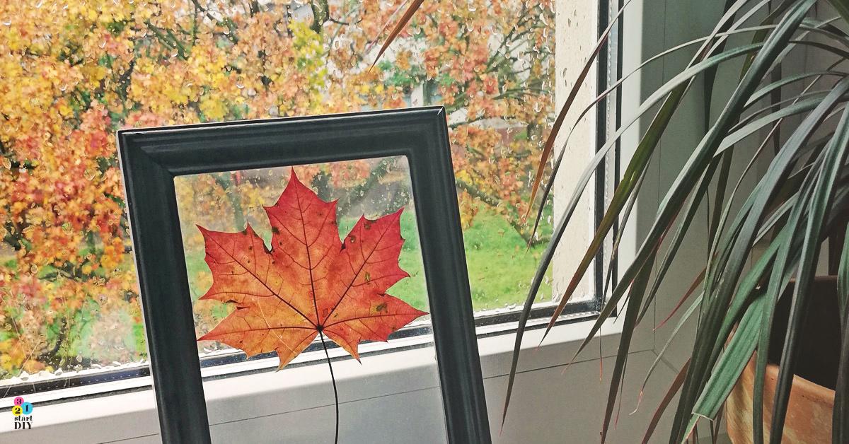 jesienny liść jesienna dekoracja diy